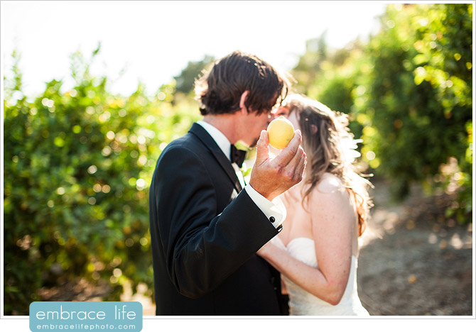 Hartley Botanica Wedding Photographer