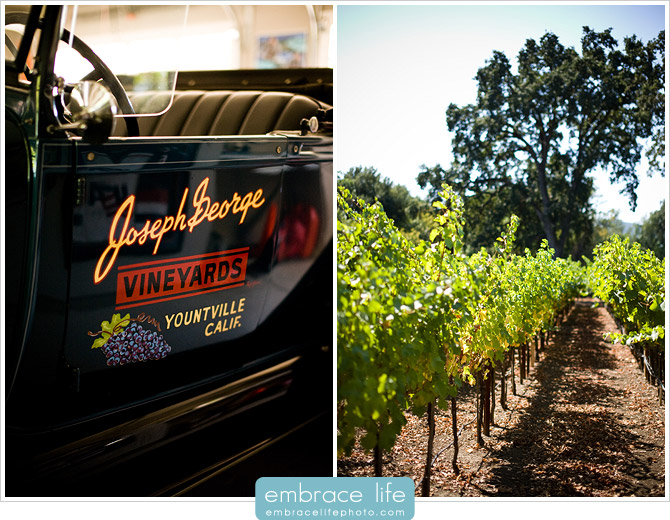 Napa Valley Wedding Photographer - 01