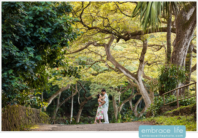 Hawaii Wedding Photographer - 03