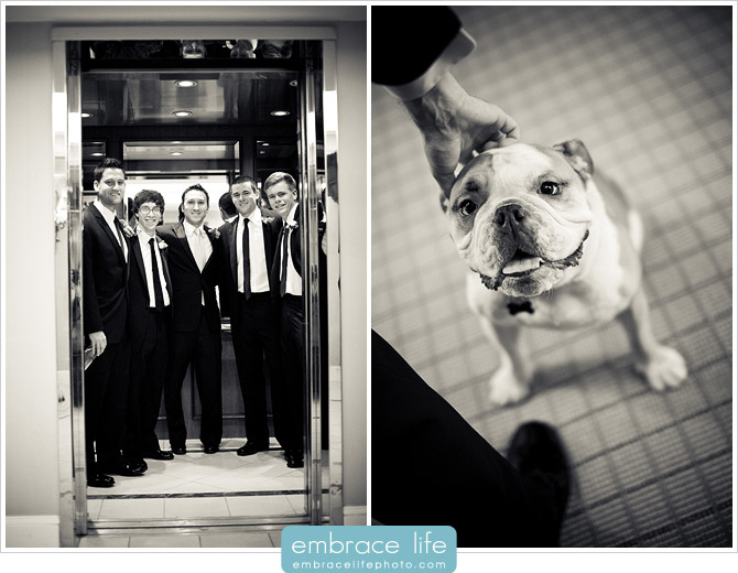 Pasadena Wedding Photographer - 05