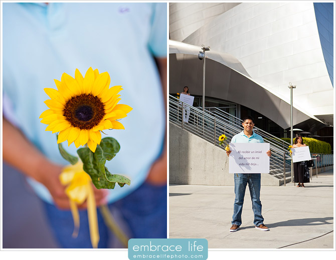 Los Angeles Proposal Photographer - 03
