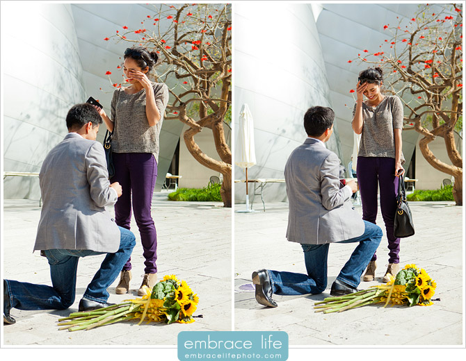 Disney Concert Hall Marriage Proposal Photography - 19