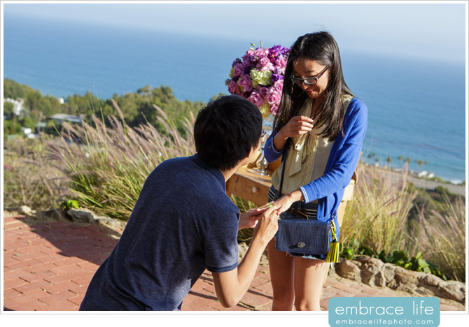 Los Angeles Marriage Proposal Photographer - 09